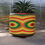 INJET-EH-Unusual-Projects-State-Fair-of-Texas-Planter-Wraps-Rough-Wall-Graphics150X150